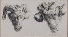 """Two Rams Looking Down, One Quarter View One Straight Ahead,"" by Karel Dujardin"
