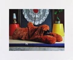 Ern del Bär - Ernie, Portraits of a Studiodog