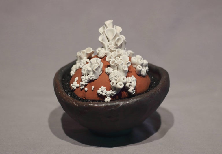 Anthozoa Blanca - Contemporary Sculpture by Ami Ayars