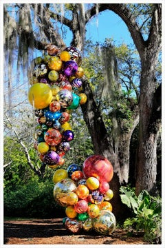 Chihuly Glass sculpture; Flora-Coral Gables, FL- Photograph