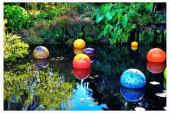 H. Allen Benowitz - Chihuly Floats; Coral Gables, FL