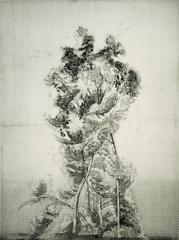 Alberone, modernist atmospheric landscape, warm black and white.