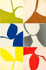 New Alphabet 21, graphic abstract aquatint monotype, primary colors, earth tones