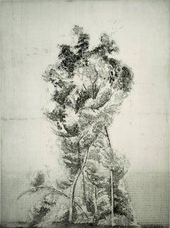 """Alberone"", modernist landscape etching tree print, warm black and white."