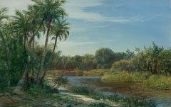Morning Myakka River, Florida