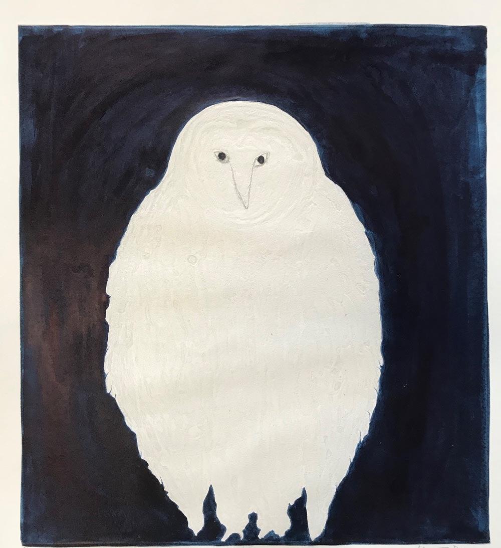 Night Owl, Kate Boxer, Contemporary Drypoint Print, Animal Art