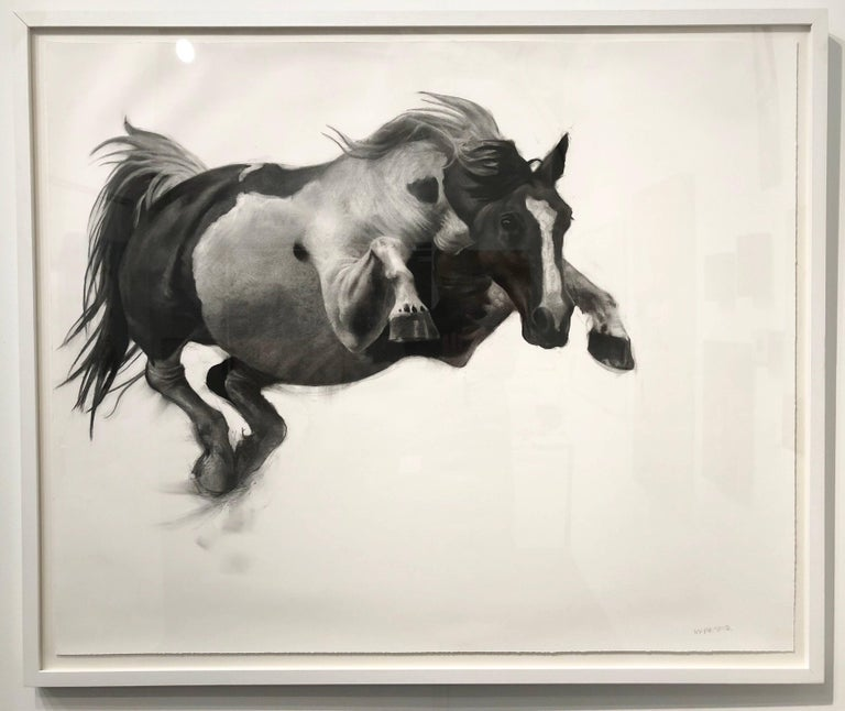 The Great Escape by Patsy McArthur, Horse charcoal drawing on Fabriano paper