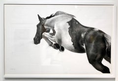 The Great Escape by Patsy McArthur - unique charcoal on paper - white box frame