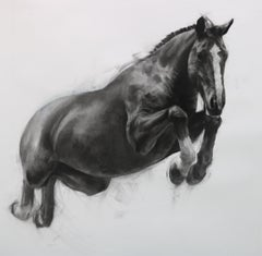 Over, Under, Sideways, Down by Patsy McArthur, running Horse, charcoal on paper