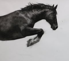 Realist Drawings and Watercolor Paintings