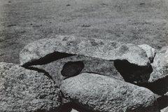 Martha's Vineyard Rocks