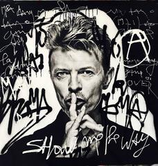 Bowie Trip