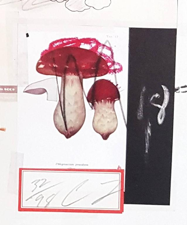 Natural History Part 1 Mushrooms n. X - Original Mixed Media by Cy Twombly For Sale 2