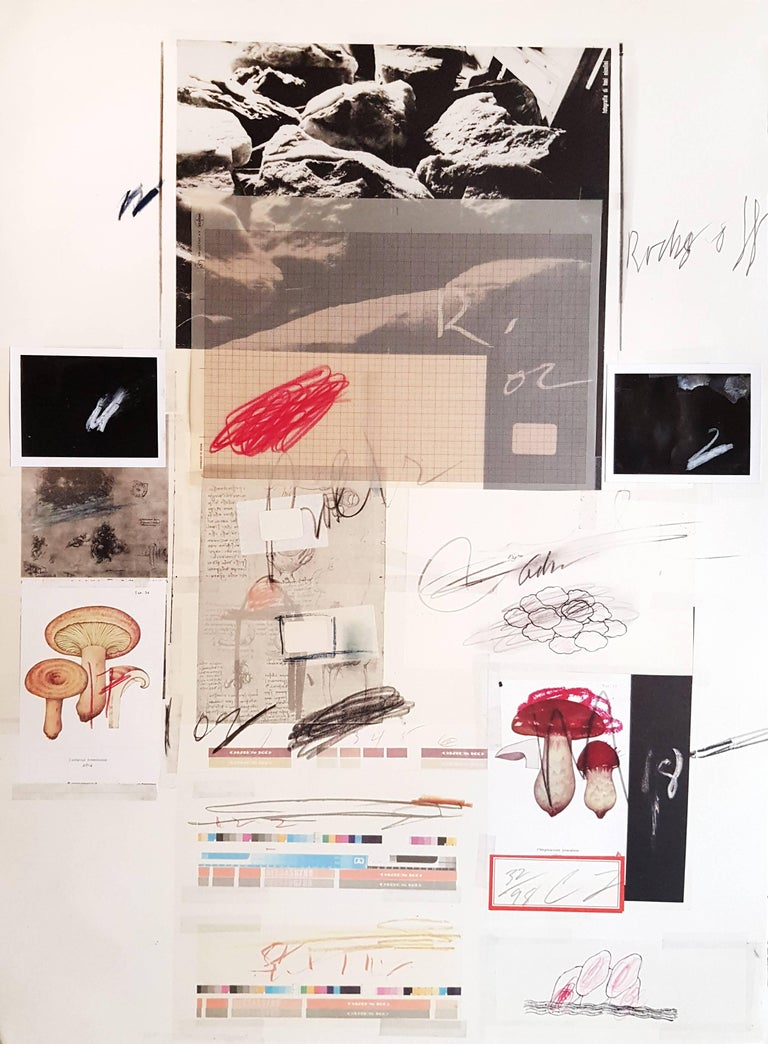 Collage, 1974. Dimensions: 76x56 cm.   This work is part of the 1974 suite entitled Natural History, Part 1, Mushrooms , including 10 lithographs with collages, printed by Matthieu Studio, Zurich and published in Berlin by Propyläen Verlag. The