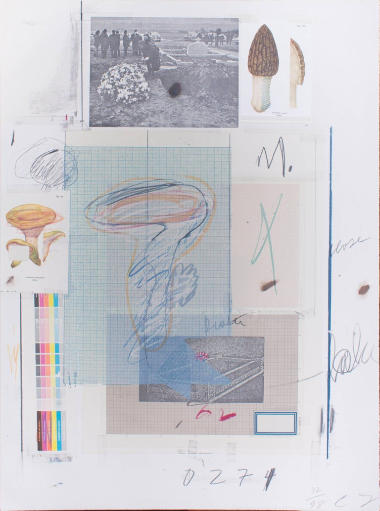 Collage. Hand signed. Edition of 98 prints. From the 'Natural History Part 1 Mushrooms', that includes 10 lithographs with collage, printed at Matthieu Studio in Zurich, and published by Propyläen Verlag, Berlin. The second suite in this series,