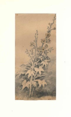 Flora Study - Original Drawing by J. P. Verdussen - End of 18th Century