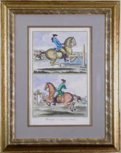 Pl. IX  Manege (Horsemanship)