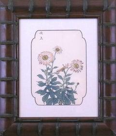 Chrysanthemum (Copper #5)