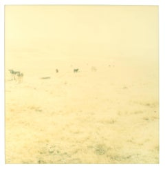 Untitled - Oilfields