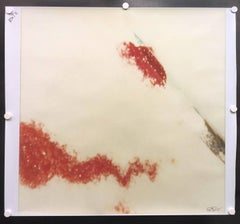 Traces from the series Frozen - based on a Polaroid Original - Proof