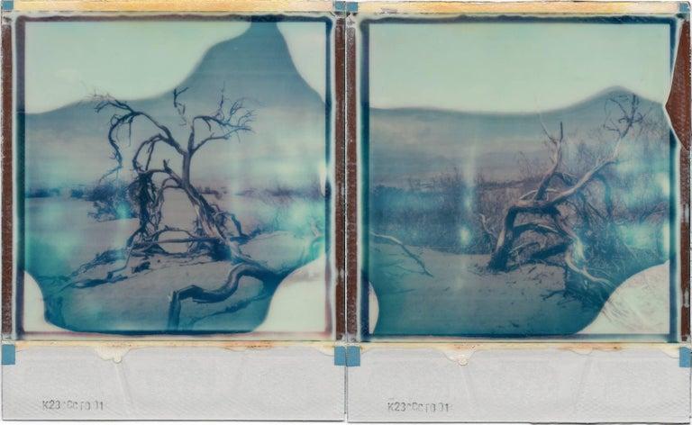 Julia Beyer Landscape Photograph - Desert Dream - based on 2 Polaroids