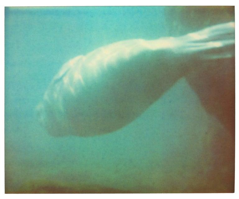 Dugong IV - Stay