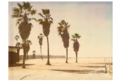 Palm Trees in Venice - analog C-Print, hand-printed by the artist, Polaroid
