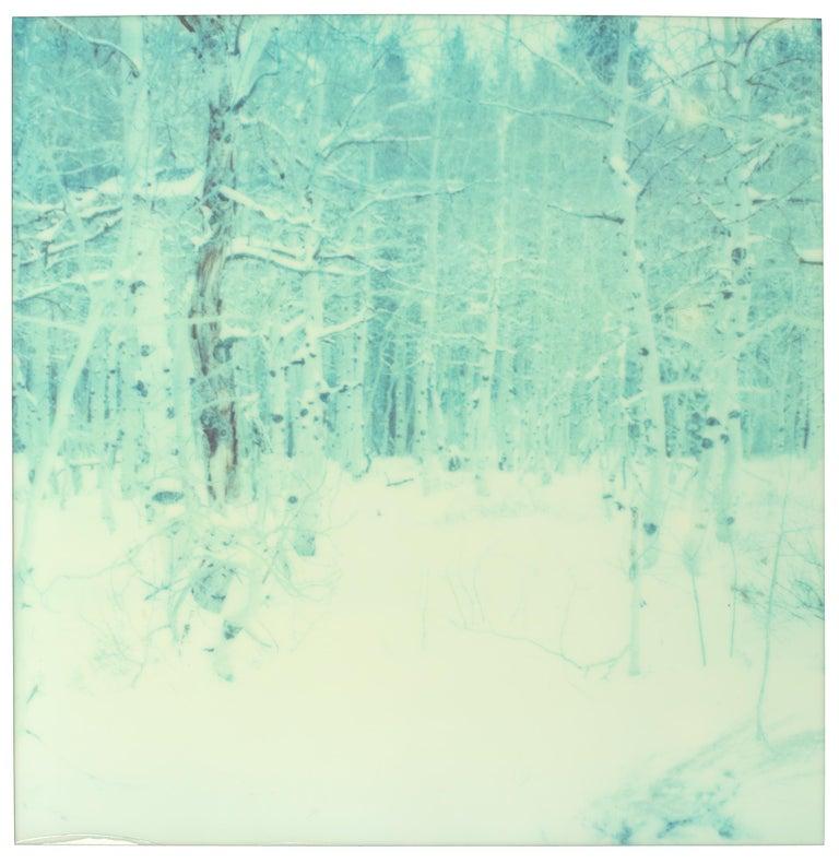 Winter (Wastelands)
