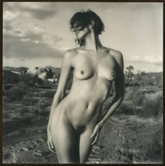 Swept Away, 21st Century, Polaroid, Nude Photography