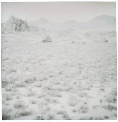 Hidden Valley (Wastelands) - Contemporary, Landscape, Polaroid, 21st Century