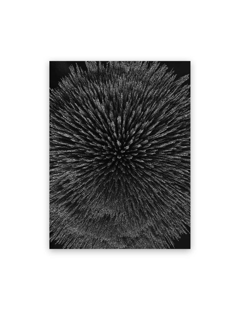 Seb Janiak Abstract Photograph - Magnetic radiation 99 (Medium)