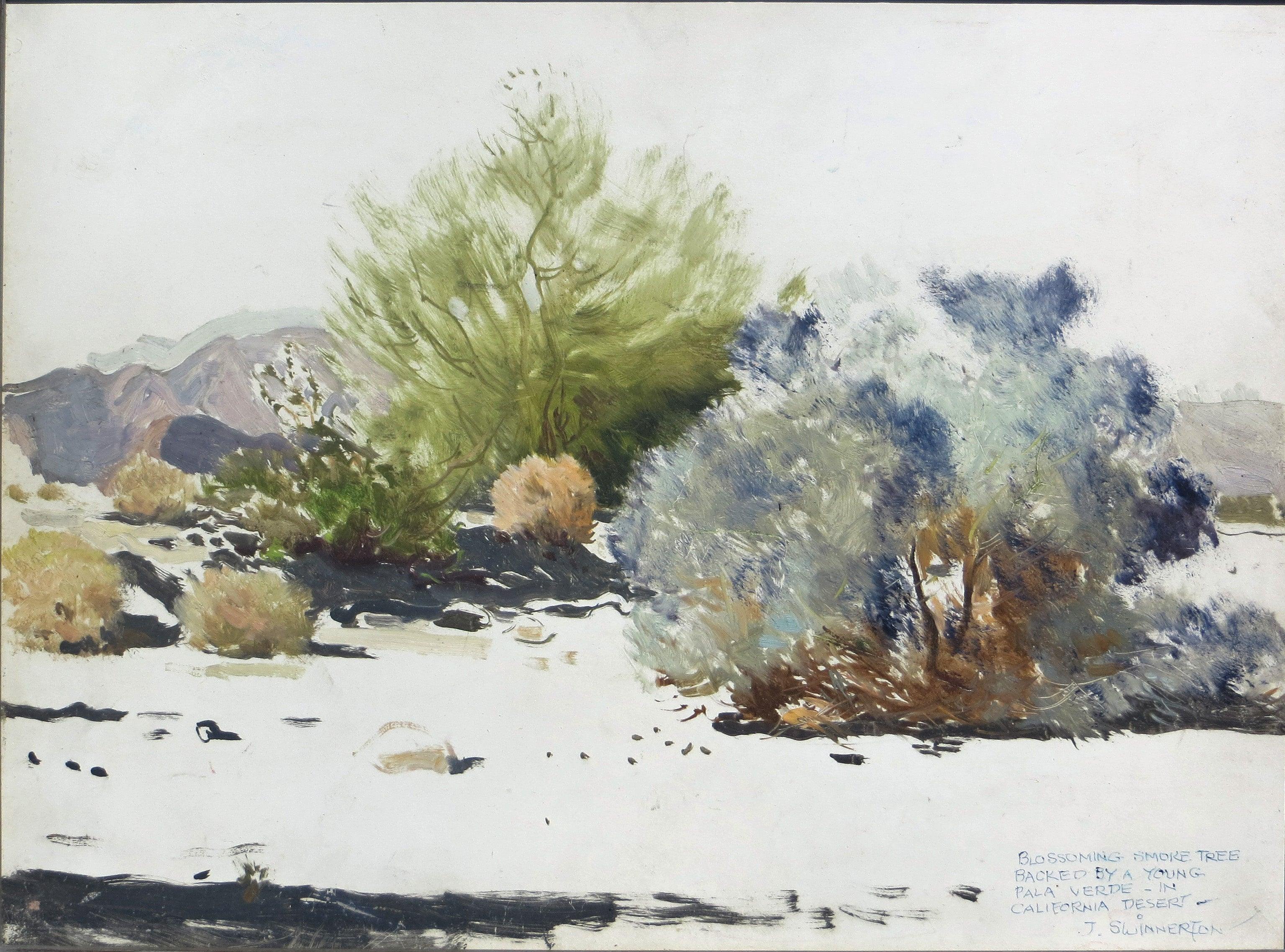 Grand Canyon Painting Desert Landscape Tree Original Scenic Southwestern Realist