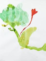 Florecen 17