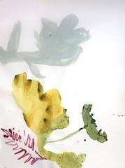 Florecen 16