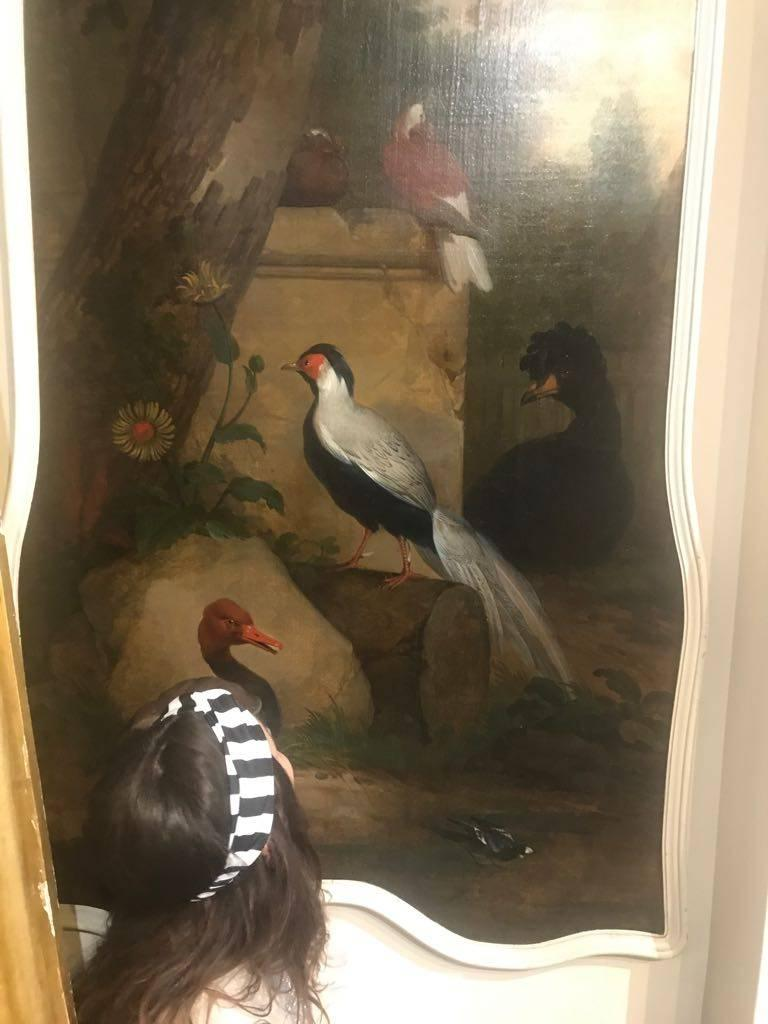 Ornamental Birds in a Landscape - Black Animal Painting by Aert Schouman