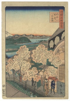 Hiroshige II, Landscape, Original Japanese Woodblock Print, Cherry Blossoms, Edo