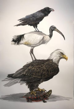 """Empire"" large scale watercolor on paper, eagle, ibis, raven, turtle"