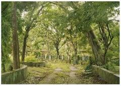 "Beatles Path, Rishikesh, India 30""x40"" large format photograph"