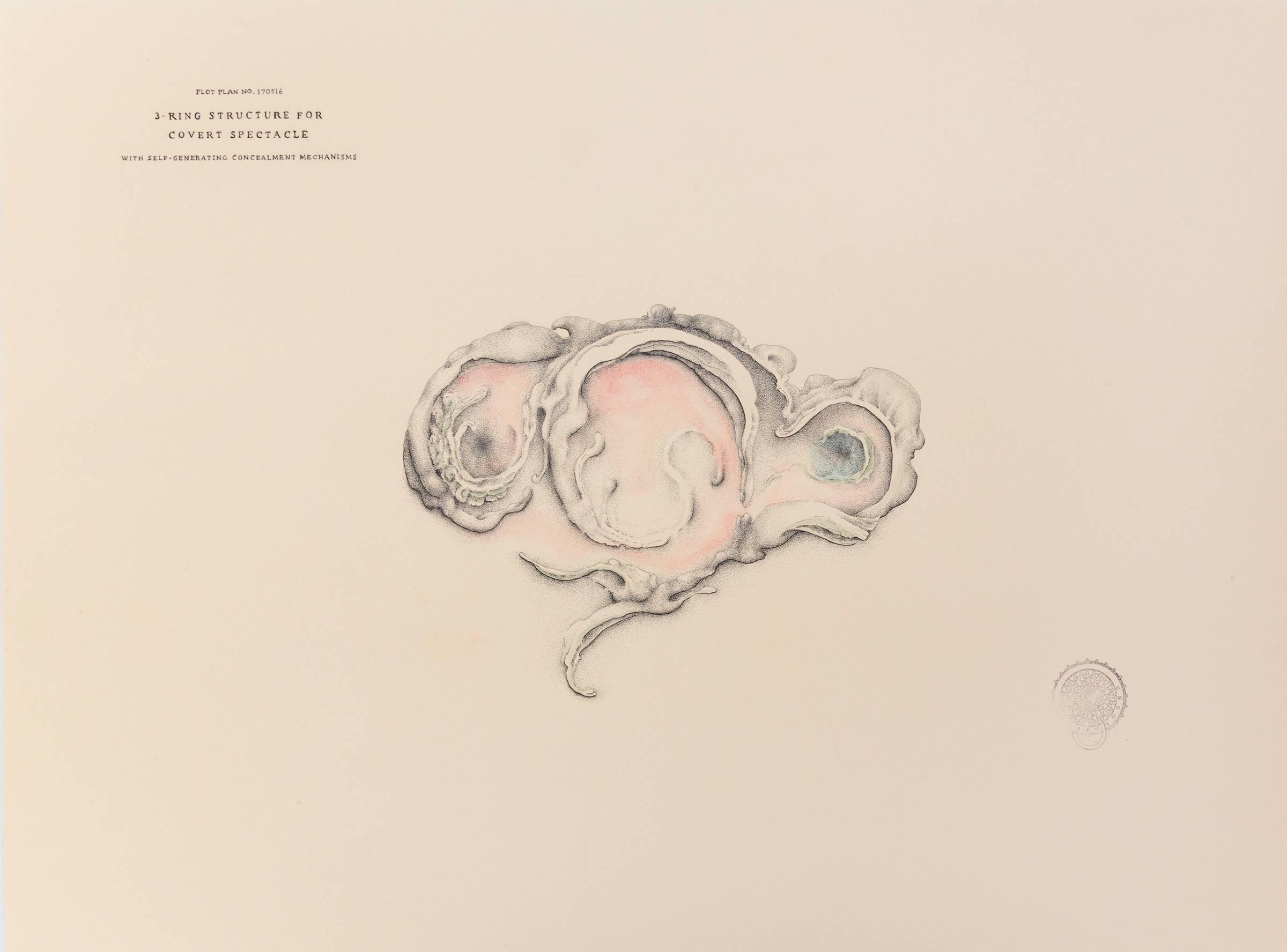 Conceptual Drawing: Plot Plan No. 170516