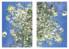 Clear air (green diptych #1)