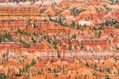 Bryce Canyon, dye sublimated print on aluminum