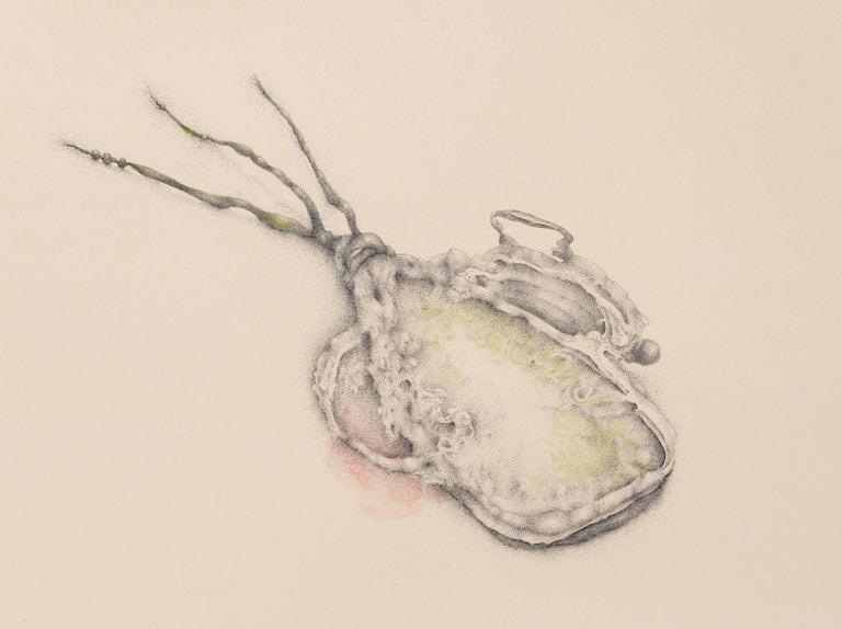 Plot Plan No. 170519 - Conceptual Art by Patricia Smith