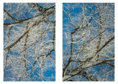 Clear air (gray/white diptych #1)