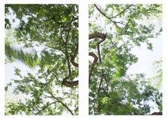 Clear air (white/green) diptych #1)