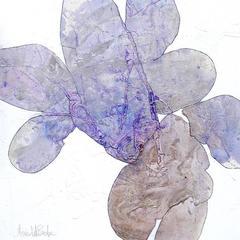 Meredith Pardue - Mariposa I
