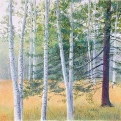 "Elissa Gore ""Birch Field 2"" -- Landscape Painting on Paper"