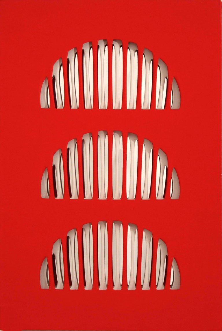 Vanna Nicolotti – Vivace  Carved and painted canvas and anodized metal, 2005  Dimensions: 70 cm x 47 cm