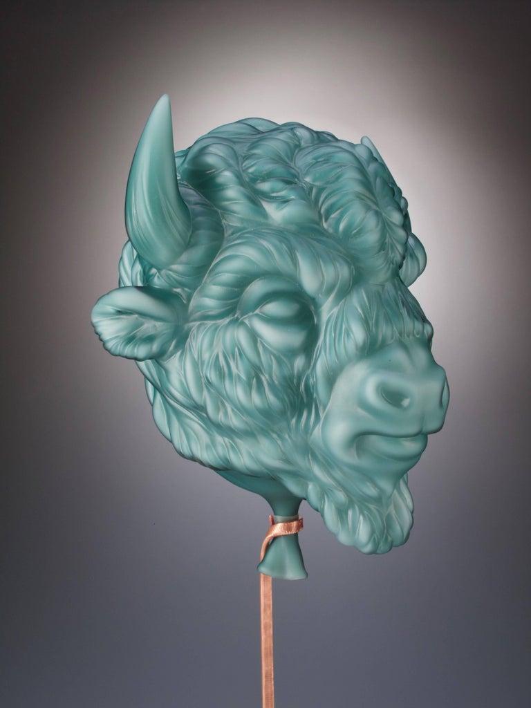 Bison For Sale 3
