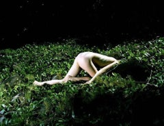 Contemporary Photographic Art: Strangelands 19