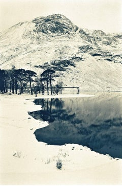 Buttermere Pines (Photograph, Print, Winter, Nature, Wildlife, Lake, Outdoors)